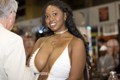 Delotta Brown en el convenio de los AVN imagen de archivo