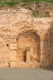 Delphi Stock Images