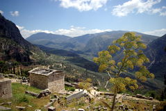 Delphi Greece Stock Image