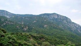 Delphi miasteczko Grecja 06 17 2014 Krajobraz natura skaliste góry blisko miasteczka Delphi w południe Grecja Zdjęcia Stock