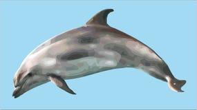 Delphin Lizenzfreies Stockfoto