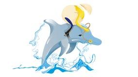 Delphin mit Ei Stockbild