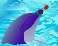 Delphin und eine Rose Stockfotografie