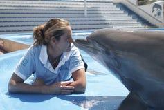 Delphin und Trainer stockfotografie