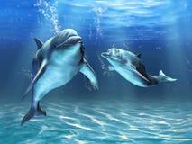 Delphine stock abbildung