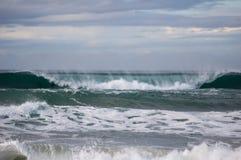 Delphine in der Welle Lizenzfreies Stockbild