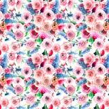 Delphinium coloré de mauve rose de wildflowers de beau beau ressort lumineux magnifique de fines herbes floral doux tendre avec d Image libre de droits