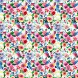 Delphinium coloré de mauve rose de wildflowers de beau ressort lumineux magnifique avec le modèle de bourgeons Photos stock