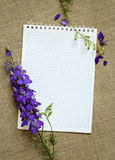 Delphinium on a diary Royalty Free Stock Images