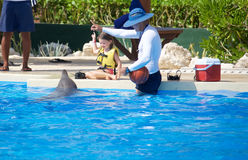 Delphinshow bei Dolphinaris Stockfotos