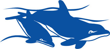 DelphinSwim Lizenzfreie Stockfotos
