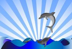 Delphinus delphis stock abbildung