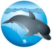 Delphinzeichen Lizenzfreies Stockfoto