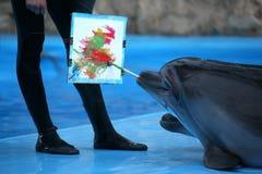 Delphinzeichnungs-Bürstenmalerei auf Segeltuch stockfotografie