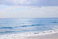 Delray Beach. Florida palm beach Stock Photography