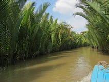 Delta étroit du Mekong avec l'eau boueuse et de belles usines le long des banques photographie stock