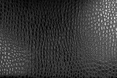 σύσταση δέρματος κροκο&delta Στοκ Φωτογραφία