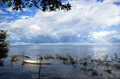 The Delta of the Amazon River Royalty Free Stock Photos
