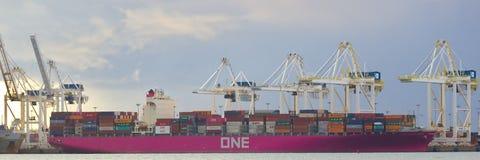 DELTA, CANADA - breng 14, 2019 in de war: groot vrachtschip worden die dat met lading bij Deltahaven wordt geladen royalty-vrije stock foto