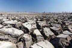 Delta d'Okavango - Moremi N P photos libres de droits