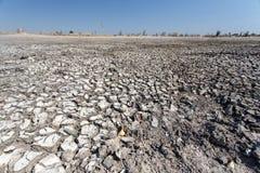 Delta d'Okavango - Moremi N P photographie stock libre de droits