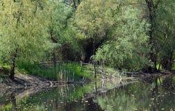 Delta Danube landscape Stock Photos
