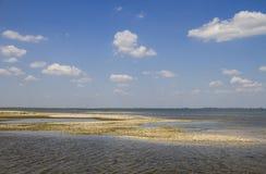 Delta of Danube. Vilkovo. Stock Image