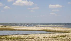 Delta of Danube. Vilkovo. Stock Photography