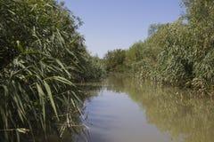 Delta of Danube. Vilkovo. Stock Photo