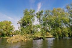 Delta de Danúbio fotografia de stock