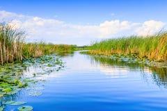 Delta de Danúbio, Romania fotos de stock