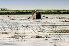Delta de Danube River Fotos de Stock Royalty Free