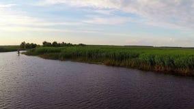 Delta de Danubio en el movimiento almacen de video