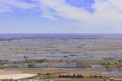 Delta de l campos del arroz del ebre del ` Imagen de archivo