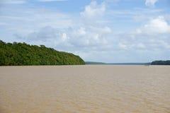 Delta de l'Orénoque Photographie stock