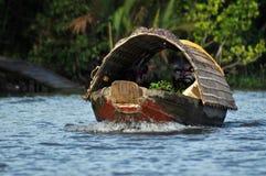 Delta de Mekong, Vietnam Photo stock