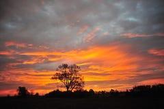 Delta de Mississippi, MS Sunrise de Clarksdale Imagens de Stock