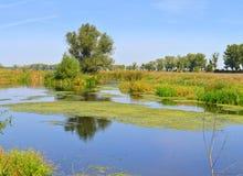 Delta de Neajlov Image stock