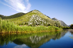 Delta de rivière de Neretva en Croatie Image libre de droits