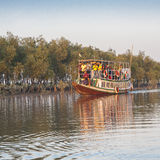 Delta de Sundarbans Photo stock