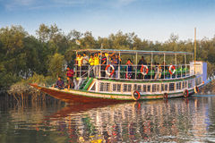 Delta de Sundarbans Fotografia de Stock Royalty Free