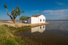 Delta del Ebro Stock Image