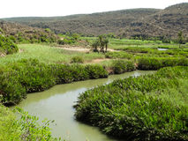 Delta del fiume del Madagascar Fotografie Stock