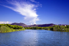 Delta del fiume di Neretva in Croazia Fotografie Stock
