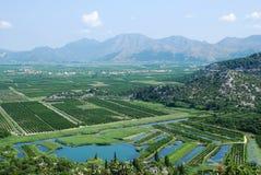 Delta del fiume di Neretva nel Croatia Fotografia Stock