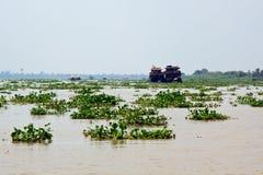 Delta del Mekong Fotografia Stock