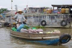 Delta del Mekong del vietnamita foto de archivo libre de regalías