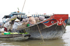 Delta del Mekong del vietnamita imagen de archivo