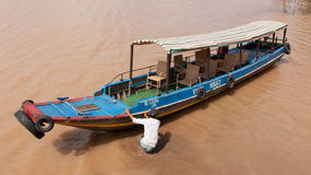 DELTA del MEKONG, VIETNAM, el 12 de agosto de 2012 - la guía turística empuja un b imagen de archivo