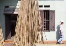 Delta del Vietnam, fiume Rosso Uomo vietnamita e bambù fotografia stock
